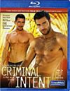 TitanMen, Criminal Intent